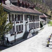Historic Hotel Steinbock