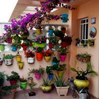Holiday home Carrer d'Avinyo