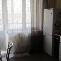 Apartment on Michurina
