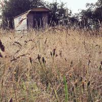 Wellbank Shepherds Hut