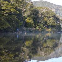 Ecoturismo Puyehue