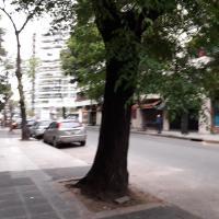 Belgrano R & Apart In Suite