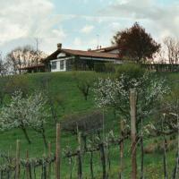 Villa Petri Lodge (Colfosco)