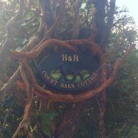 Court Barn Cottage B&B