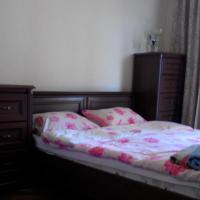 Comfortable flat near the Dnieper river in Kyiv