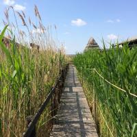 Pfahlbau in Weiden am See