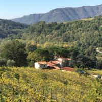 """Il Poggiolo ai Casini </h2 </a <div class=sr-card__item sr-card__item--badges <div class= sr-card__badge sr-card__badge--class u-margin:0  data-ga-track=click data-ga-category=SR Card Click data-ga-action=Hotel rating data-ga-label=book_window:  day(s)  <span class=bh-quality-bars bh-quality-bars--small   <svg class=bk-icon -iconset-square_rating fill=#FEBB02 height=12 width=12<use xlink:href=#icon-iconset-square_rating</use</svg<svg class=bk-icon -iconset-square_rating fill=#FEBB02 height=12 width=12<use xlink:href=#icon-iconset-square_rating</use</svg<svg class=bk-icon -iconset-square_rating fill=#FEBB02 height=12 width=12<use xlink:href=#icon-iconset-square_rating</use</svg<svg class=bk-icon -iconset-square_rating fill=#FEBB02 height=12 width=12<use xlink:href=#icon-iconset-square_rating</use</svg </span </div   <div class=sr-card__item__review-score style=padding: 8px 0    </div </div <div data-component=deals-container data-deals="""""""" data-layout=horizontal data-max-elements=3 data-no-tooltips=1 data-use-drawer= data-prevent-propagation=0 class=c-deals-container   <div class=c-deals-container__inner-box    </div </div <div class=sr-card__item   data-ga-track=click data-ga-category=SR Card Click data-ga-action=Hotel location data-ga-label=book_window:  day(s)  <svg aria-hidden=true class=bk-icon -iconset-geo_pin sr_svg__card_icon focusable=false height=12 role=presentation width=12<use xlink:href=#icon-iconset-geo_pin</use</svg <div class= sr-card__item__content   Scopeti • <span 1,9 km </span  dal centro </div </div </div </div </div </li <div data-et-view=bNXGDLWKXWUMKaGSSFOVT:1</div <li id=hotel_309834 data-is-in-favourites=0 data-hotel-id='309834' class=sr-card sr-card--arrow bui-card bui-u-bleed@small js-sr-card m_sr_info_icons card-halved card-halved--active   <div data-href=/hotel/it/agriturismo-colognole.it.html onclick=window.open(this.getAttribute('data-href')); target=_blank class=sr-card__row bui-card__content data-et-click= data-et-view=  <div class=s"""