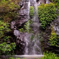 Nimbin waterfall retreat