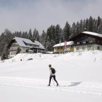 Hotel Tischlbergerhof, hotel v Ramsau am Dachstein
