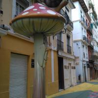 sweet home-Alicante!