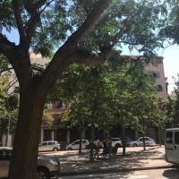 Plaza Sainetero Arniches