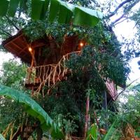 Habarana Tree House Ambasewana Resort