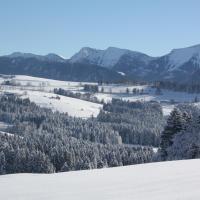 Ferienwohnung Nagelfluh Allgäu
