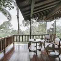 Sunia Jungle