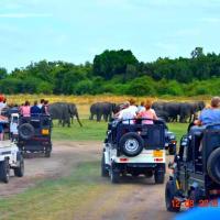 Elephant Pass - Minneriya
