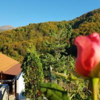 Stara Planina Stankovic Apartman