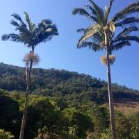 Quinta da Gralha Azul