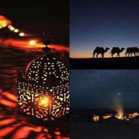 Camp Sahara Travel