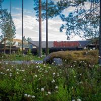 Hotel Mesikämmen, hotel in Ähtäri