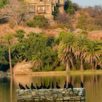 Shikar Oudi Jungle Villa