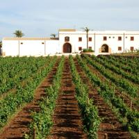 Agriturismo Baglio Donnafranca Wine Resort