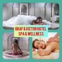 Graf Victor Hotel, מלון באלאניה