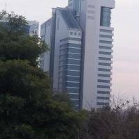 Capri Executive