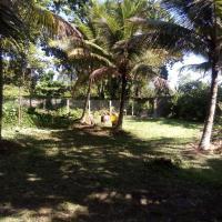 Camping Dois Pinheiros