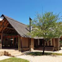 Pilanesberg Black Rhino