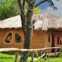 The Clay House