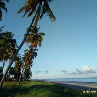 Flat Japaratinga Beach