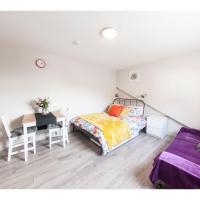 ELM studio flat in Cricklewood