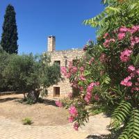 PYRGOS RALLI ESTATE Apartments and Suites