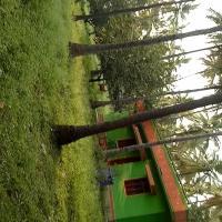 Farm house channapatna Bangalore mysore road