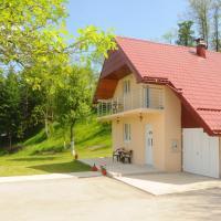 VILLAGE HOUSE ALEKSIĆ