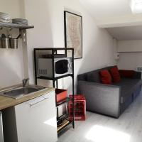 Appartement Loft Hypercentre Revel