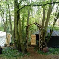 Ancient Woodland Retreat