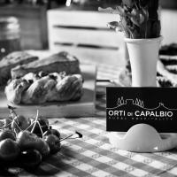 Orti di Capalbio