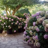 Villa Nikolas - Rock rooms