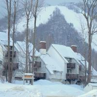 Ski In/Out Trailside Townhome