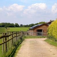Hazel Barn </h2 </a <div class=sr-card__item sr-card__item--badges <div style=padding: 2px 0    </div </div <div class=sr-card__item   data-ga-track=click data-ga-category=SR Card Click data-ga-action=Hotel location data-ga-label=book_window:  day(s)  <svg alt=Property location  class=bk-icon -iconset-geo_pin sr_svg__card_icon height=12 width=12<use xlink:href=#icon-iconset-geo_pin</use</svg <div class= sr-card__item__content   Stelling • <span 1.5 miles </span  from centre </div </div </div </div </div </li <div data-et-view=cJaQWPWNEQEDSVWe:1</div <li id=hotel_5164989 data-is-in-favourites=0 data-hotel-id='5164989' class=sr-card sr-card--arrow bui-card bui-u-bleed@small js-sr-card m_sr_info_icons card-halved card-halved--active   <div data-href=/hotel/gb/hazel-barn-stelling-minnis.en-gb.html onclick=window.open(this.getAttribute('data-href')); target=_blank class=sr-card__row bui-card__content data-et-click=  <div class=sr-card__image js-sr_simple_card_hotel_image has-debolded-deal js-lazy-image sr-card__image--lazy data-src=https://q-cf.bstatic.com/xdata/images/hotel/square200/201929358.jpg?k=e7cbd6d0cd7b361c576c554c593c3b24aebbea2f5154d4feaf83a1ea8f845425&o=&s=1,https://q-cf.bstatic.com/xdata/images/hotel/max1024x768/201929358.jpg?k=908dfc4b41f365d603dba9aba6b8a8b90d3761e13368cd756b9952dd9d43daff&o=&s=1  <div class=sr-card__image-inner css-loading-hidden </div <noscript <div class=sr-card__image--nojs style=background-image: url('https://q-cf.bstatic.com/xdata/images/hotel/square200/201929358.jpg?k=e7cbd6d0cd7b361c576c554c593c3b24aebbea2f5154d4feaf83a1ea8f845425&o=&s=1')</div </noscript </div <div class=sr-card__details data-et-click=     data-et-view=  <div class=sr-card_details__inner <a href=/hotel/gb/hazel-barn-stelling-minnis.en-gb.html onclick=event.stopPropagation(); target=_blank <h2 class=sr-card__name u-margin:0 u-padding:0 data-ga-track=click data-ga-category=SR Card Click data-ga-action=Hotel name data-ga-label=book_window:  day(s)  Hazel Barn </h2 <