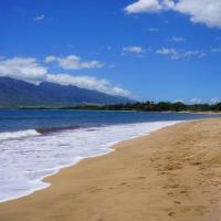 Tropical Maui Beach Paradise