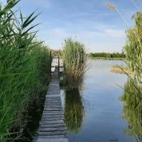 Tóparti faház /Lakeside wooden bungalow