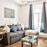 Newly Renovated Studio in central montreal