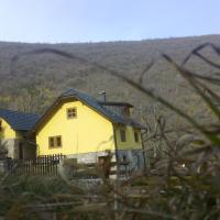 Guest House - Stari Javor B&B