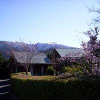 Forest Peak Motel