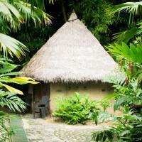 Claraluz Eco-lodging and Organic Farm