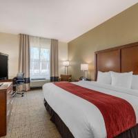 Comfort Inn & Suites Northeast - Gateway