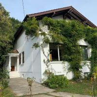 Villa with 7 rooms near airport, 5 min walk to the airport
