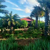 Red Palm Village